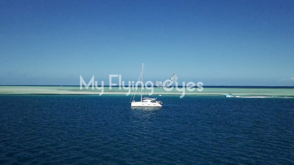 Turquoise sea Sailboats 3